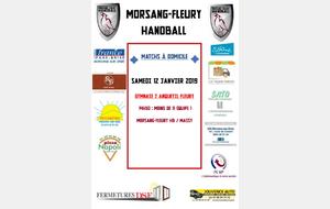 Matchs à domicile week-end du 12/13 janvier 2019